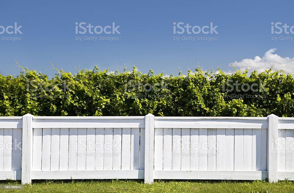 White picket fence stock photo
