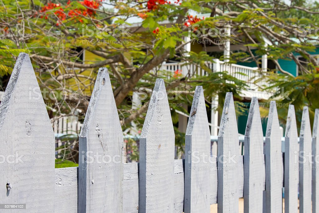 White picket fence with homes behind in Belize stock photo