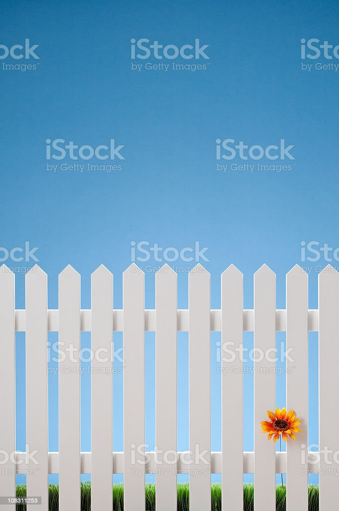 White Picket Fence With Single Flower stock photo