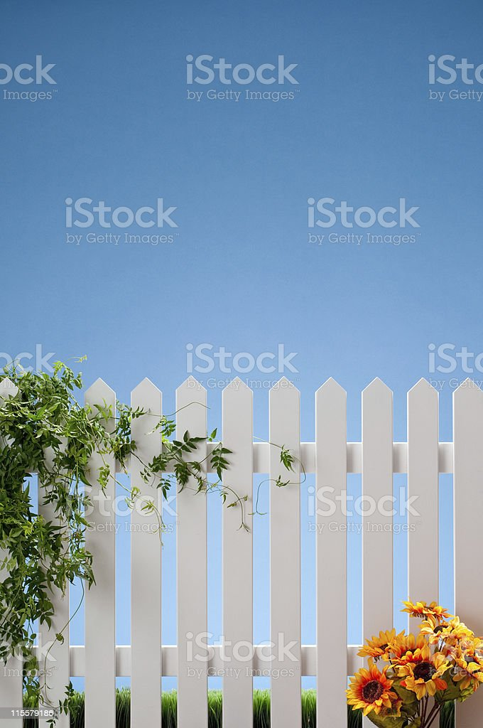 White Picket Fence With Vines And Flowers royalty-free stock photo