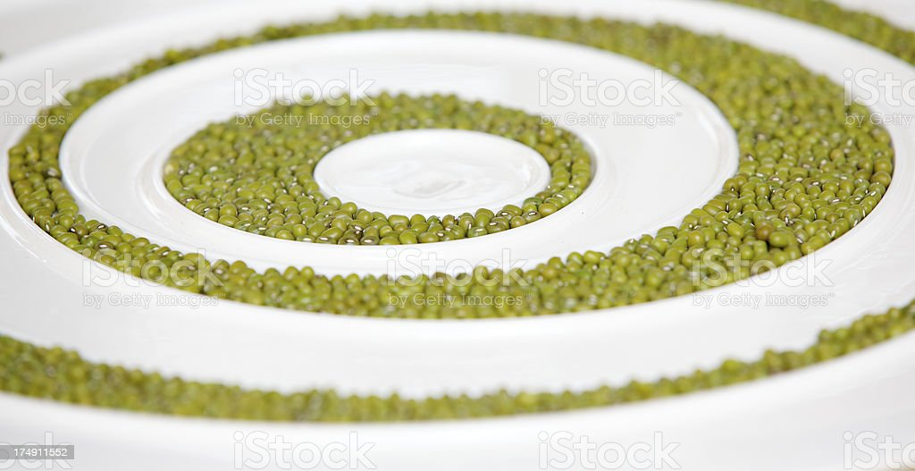 White plate with peas royalty-free stock photo