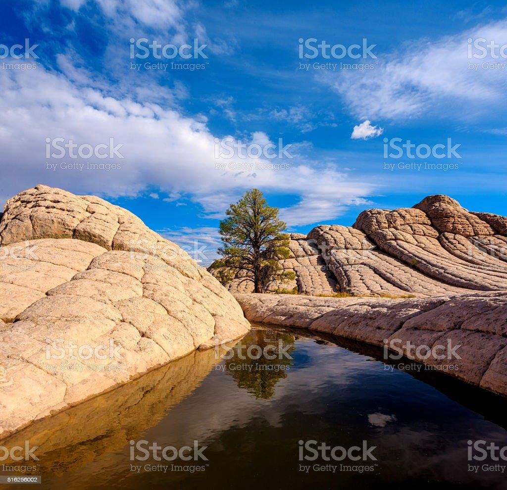 White Pocket, Arizona, USA stock photo
