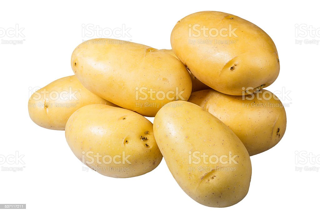 White potatoes fresh picked isolated stock photo