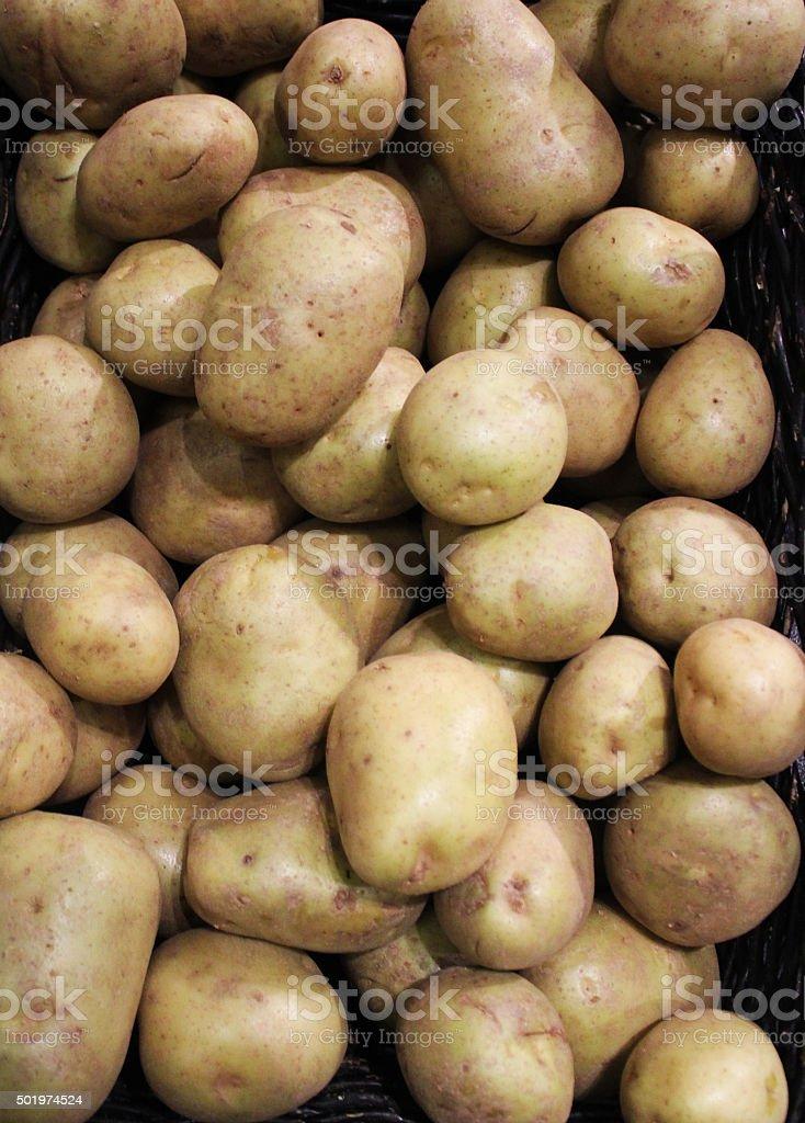 White Potatoes on display stock photo