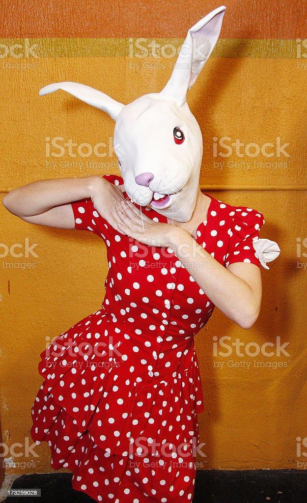 White Rabbit Costume royalty-free stock photo