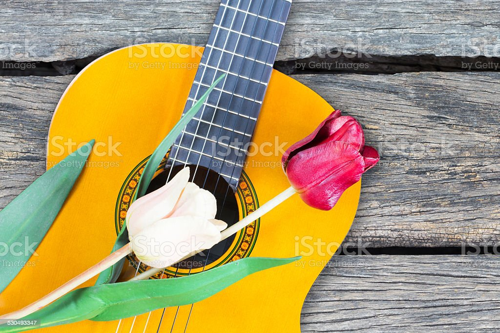 white & red flowers on classical acoustic guitar stock photo