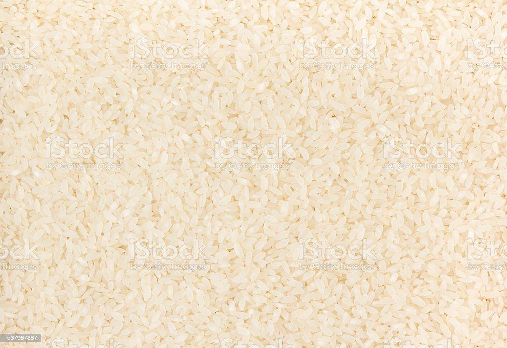 White rice background stock photo