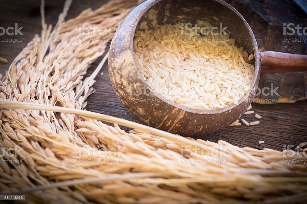 white rice in coconut bowl and paddy rice stock photo