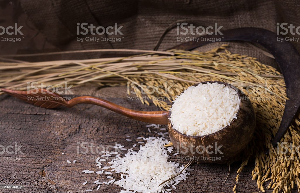 white rice in wood bowl and paddy rice stock photo