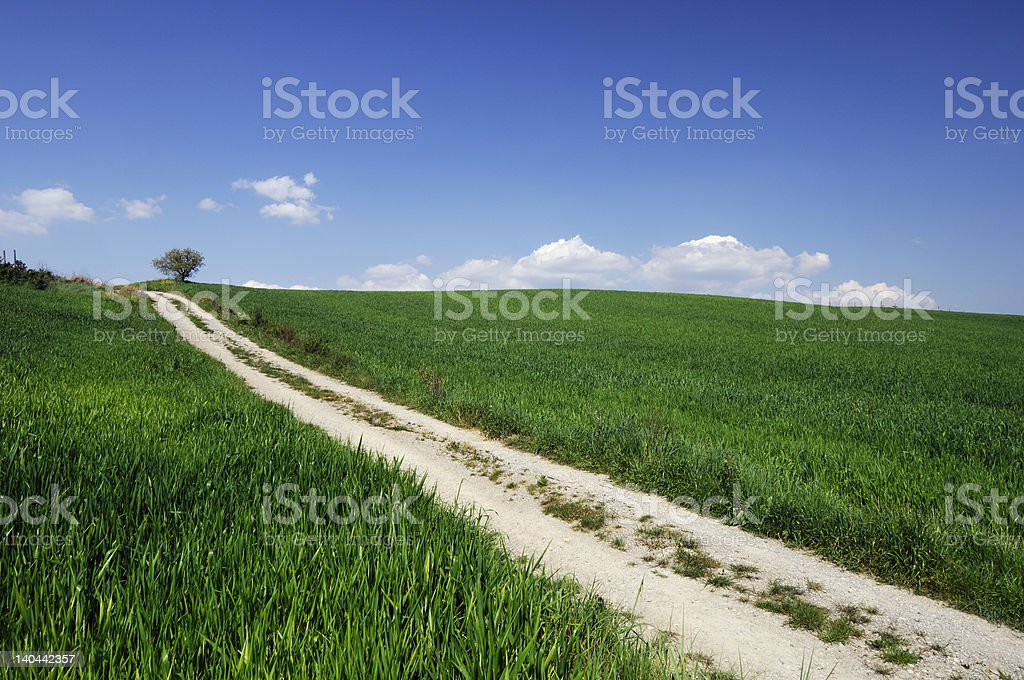 white road in green landscape royalty-free stock photo