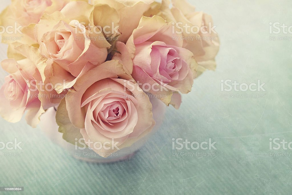 White roses stock photo