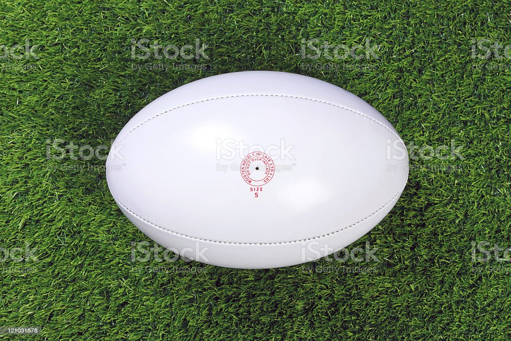 White rugby ball on green grass stock photo