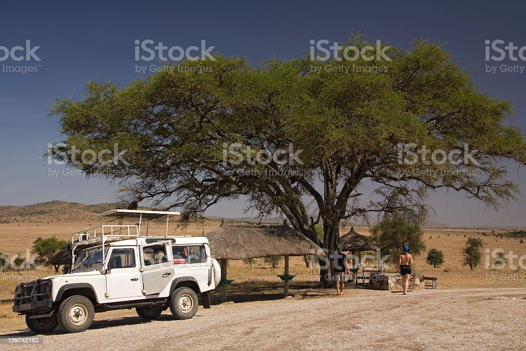 White safari vehicle under a tree in the desert stock photo