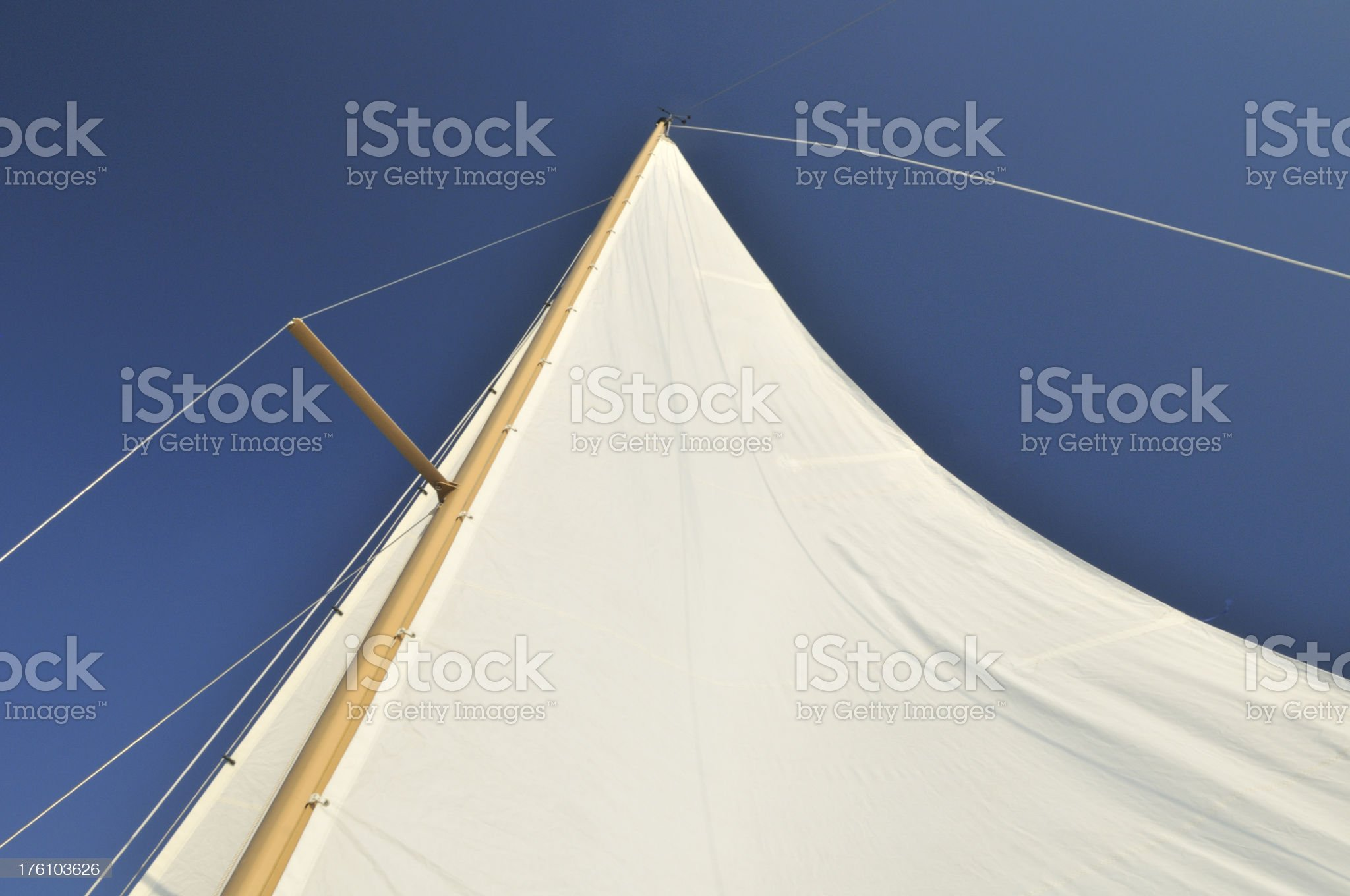 White Sail royalty-free stock photo