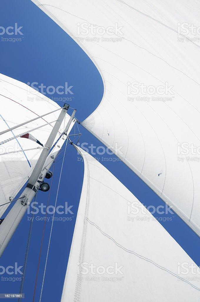 White sails royalty-free stock photo
