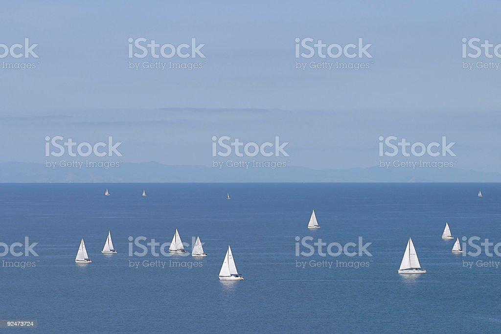 White sails. royalty-free stock photo