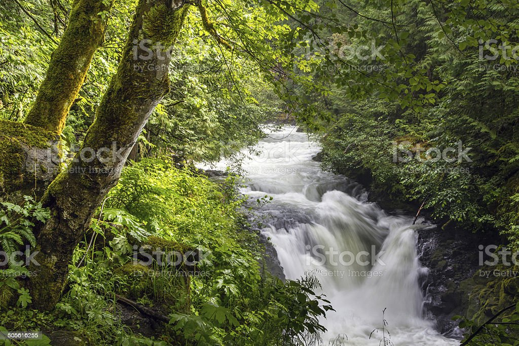White Salmon River Falls stock photo