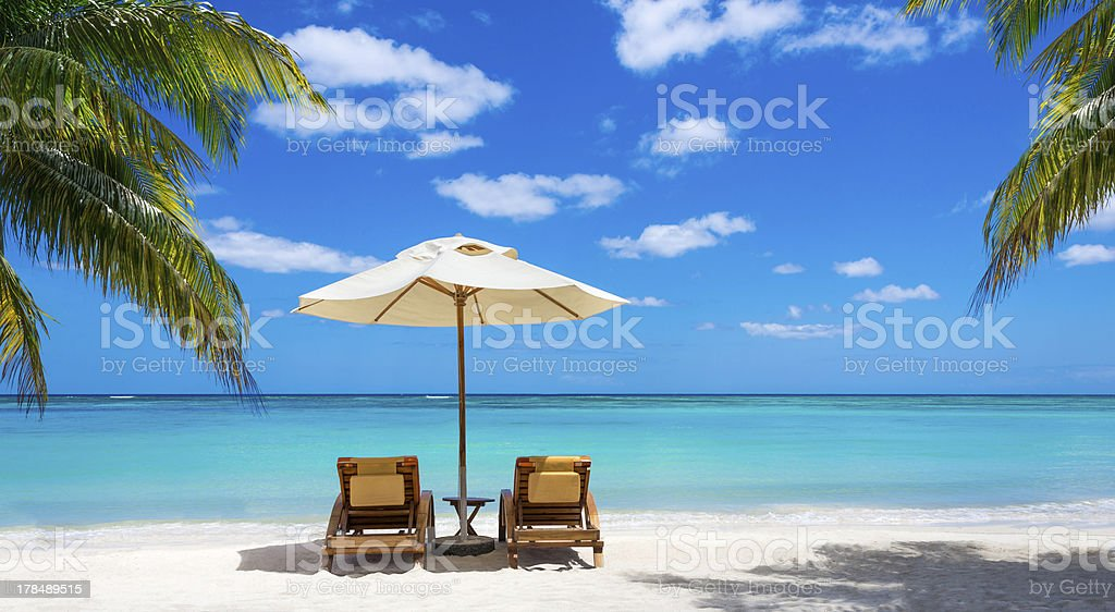 White sand and palm trees on beach stock photo