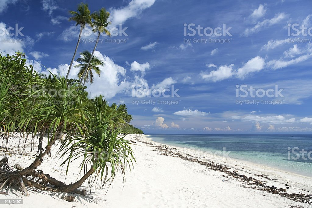 white sand beach siquijor island philippines royalty-free stock photo