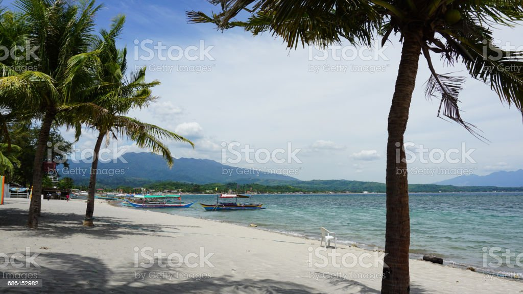 White sand beach with frame trees and tour boat stock photo