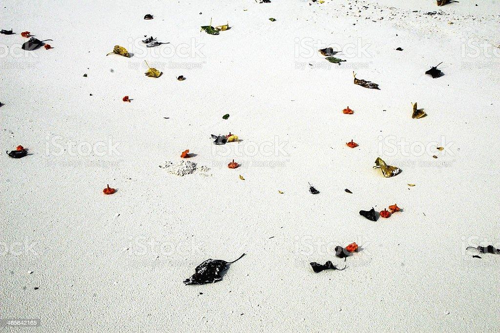 white sand royalty-free stock photo