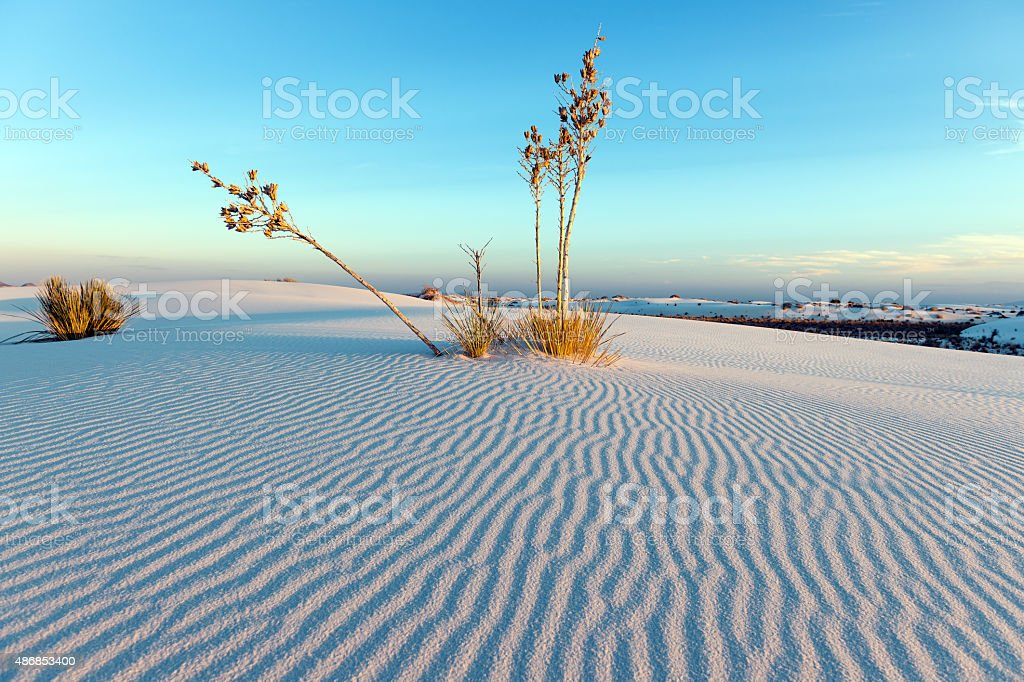 White Sand Ripples during Sunset in, New Mexico, USA stock photo