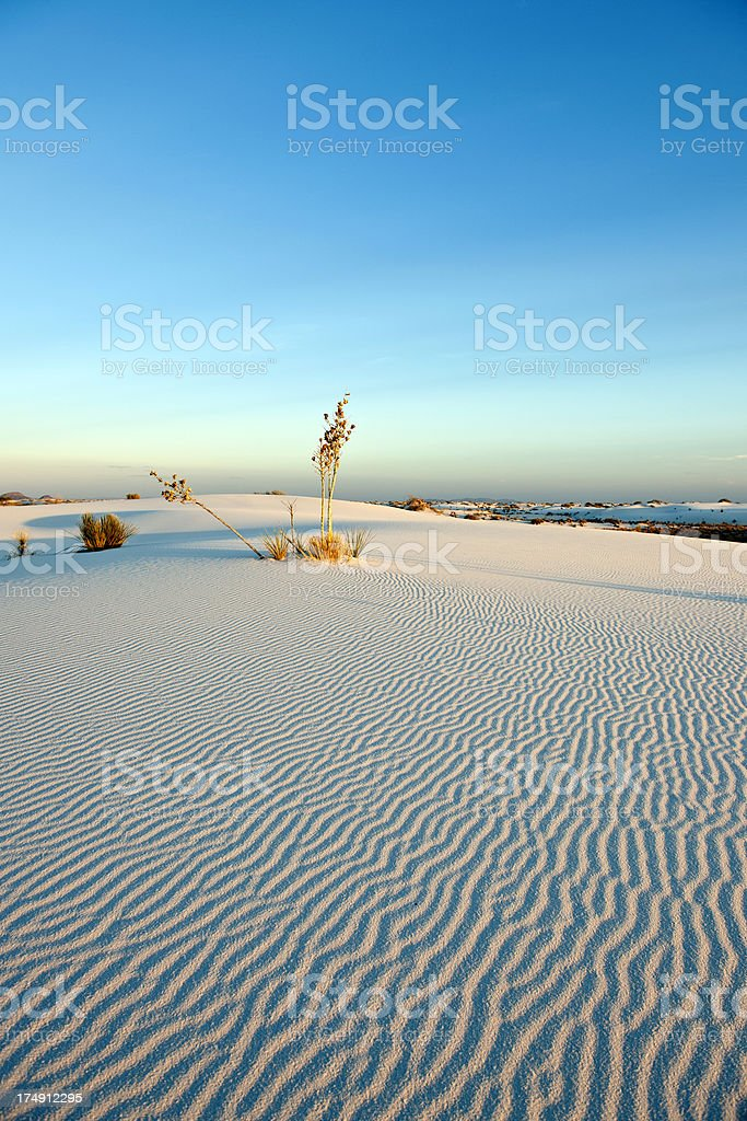 White Sand Ripples in Twilightd  New Mexico USA stock photo