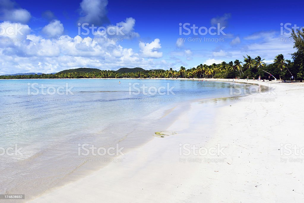 White Sand Tropical  Beach on Martinique stock photo