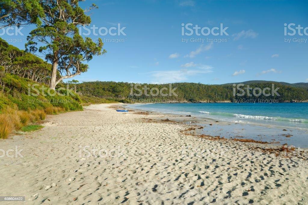 White Sandy Beach stock photo