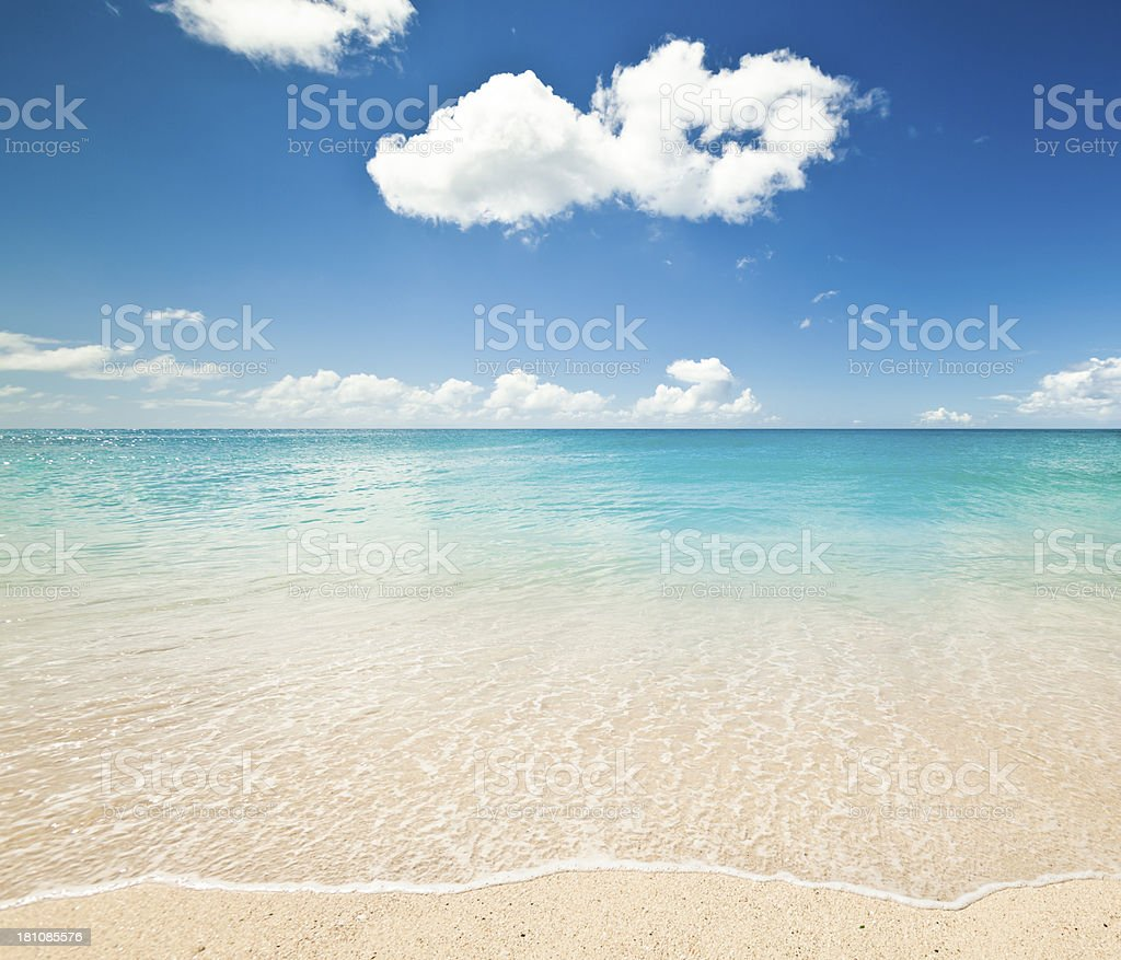 White Sandy Caribbean Beach royalty-free stock photo