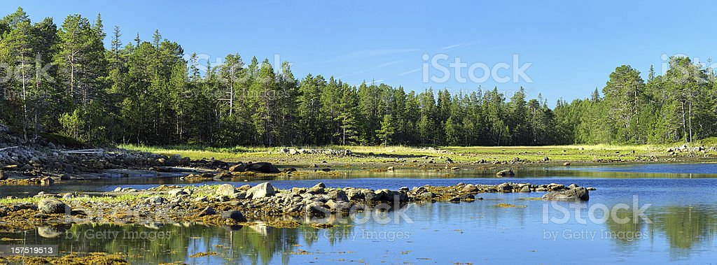 White Sea coast during the low tide on Solovetsky Islands stock photo