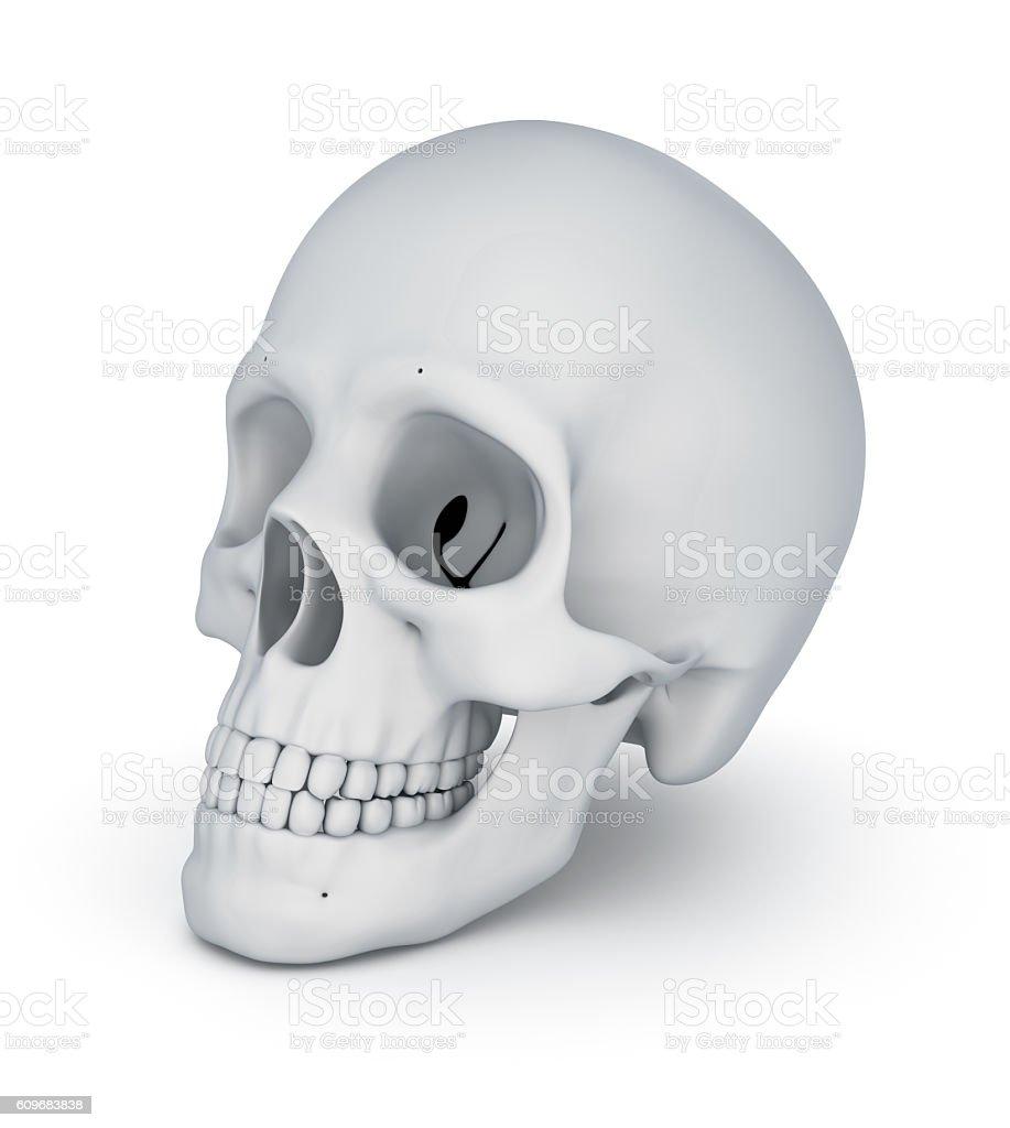 White skull over white,  3D illustration stock photo