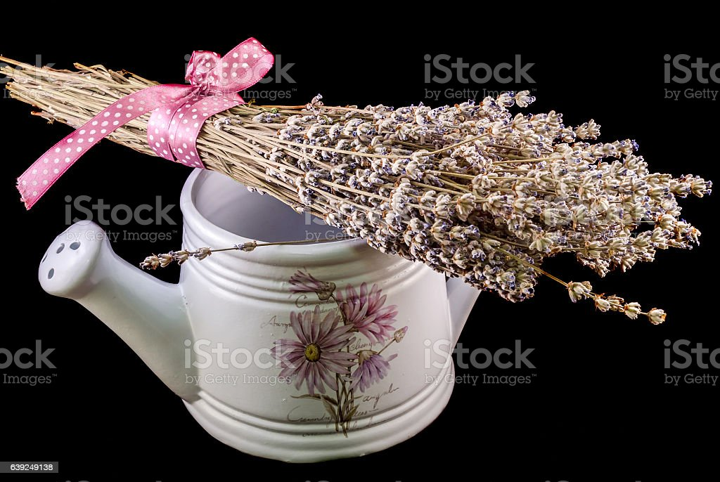 White sprinkler, watering can and a bouquet of Lavandula flowers stock photo