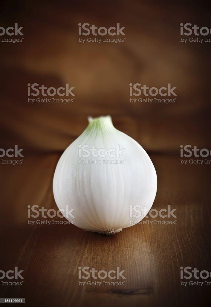 White sweet onion bulb stock photo