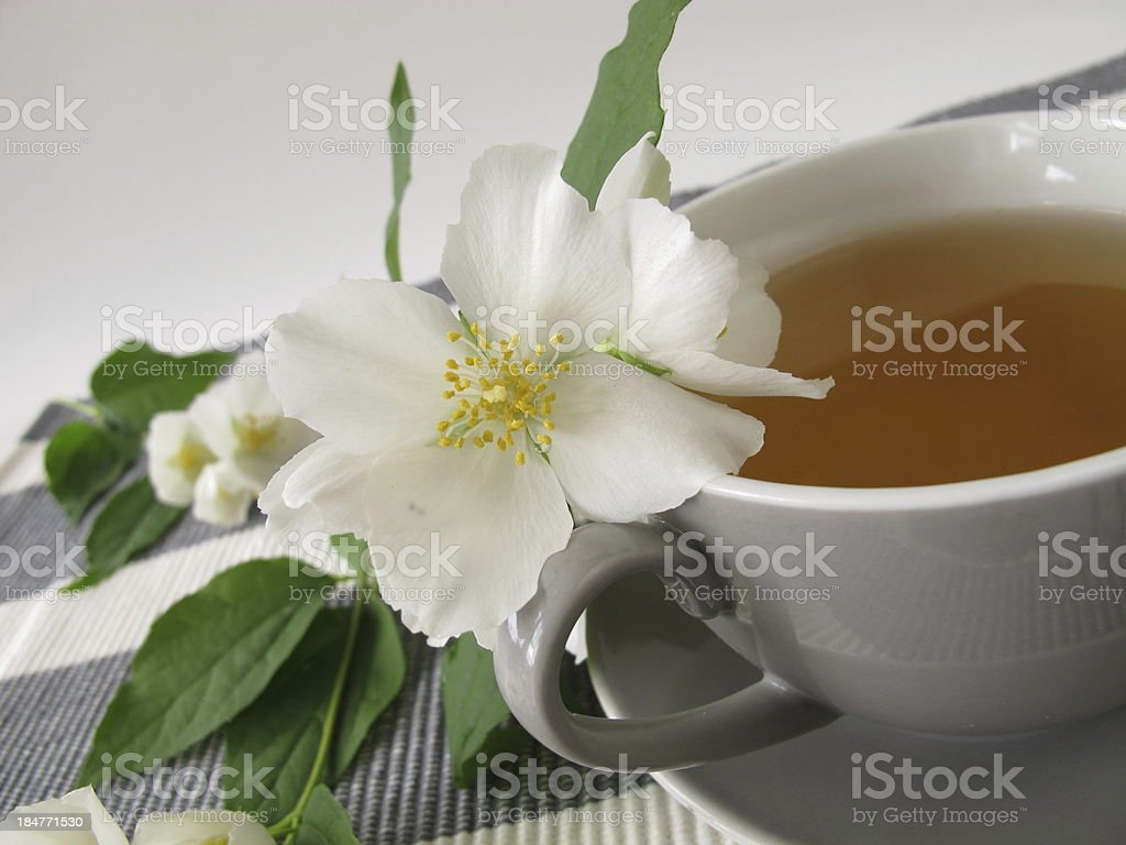 White tea and summer jasmine royalty-free stock photo