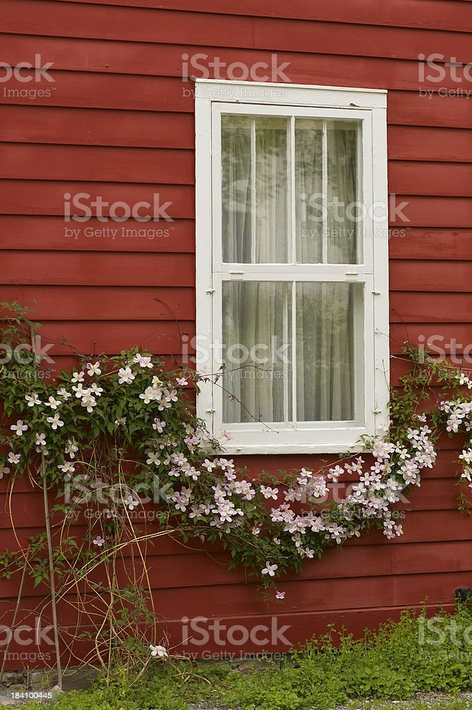White trim window stock photo