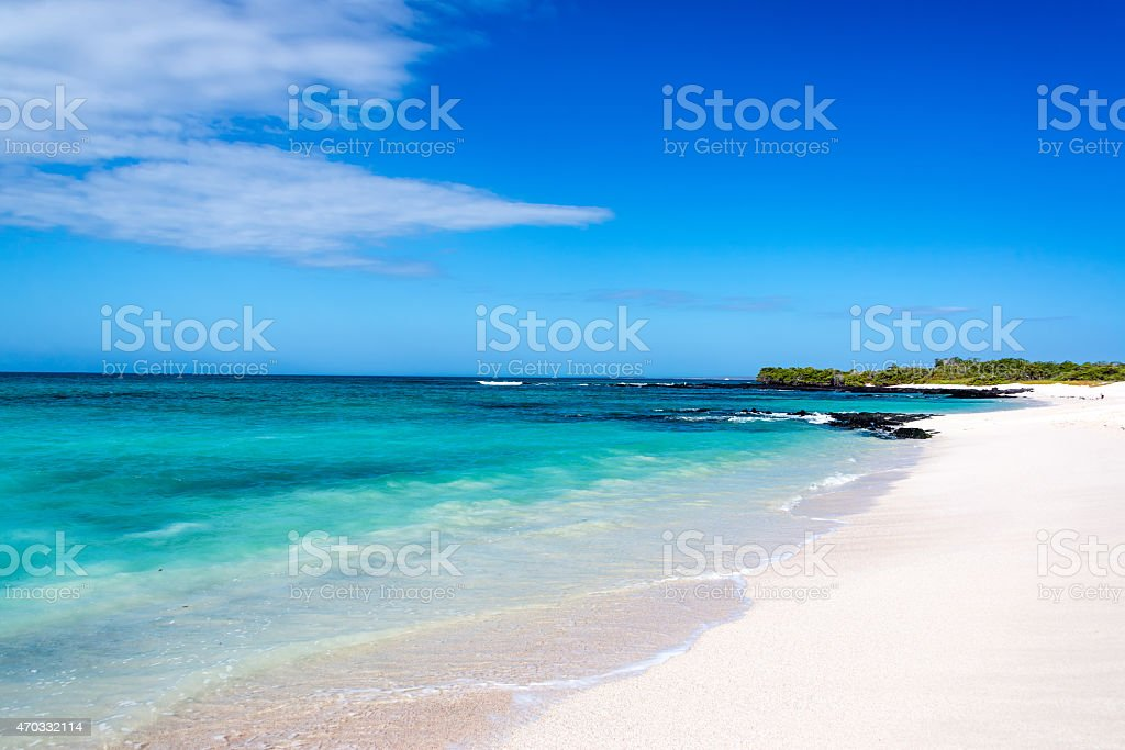 White Tropical Beach stock photo