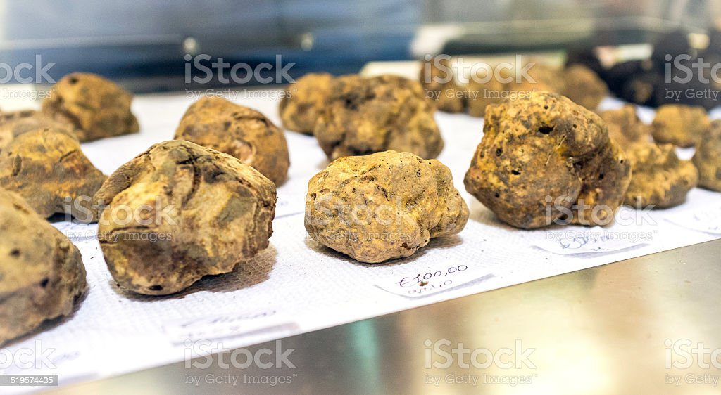 White truffles exposition. Color image stock photo