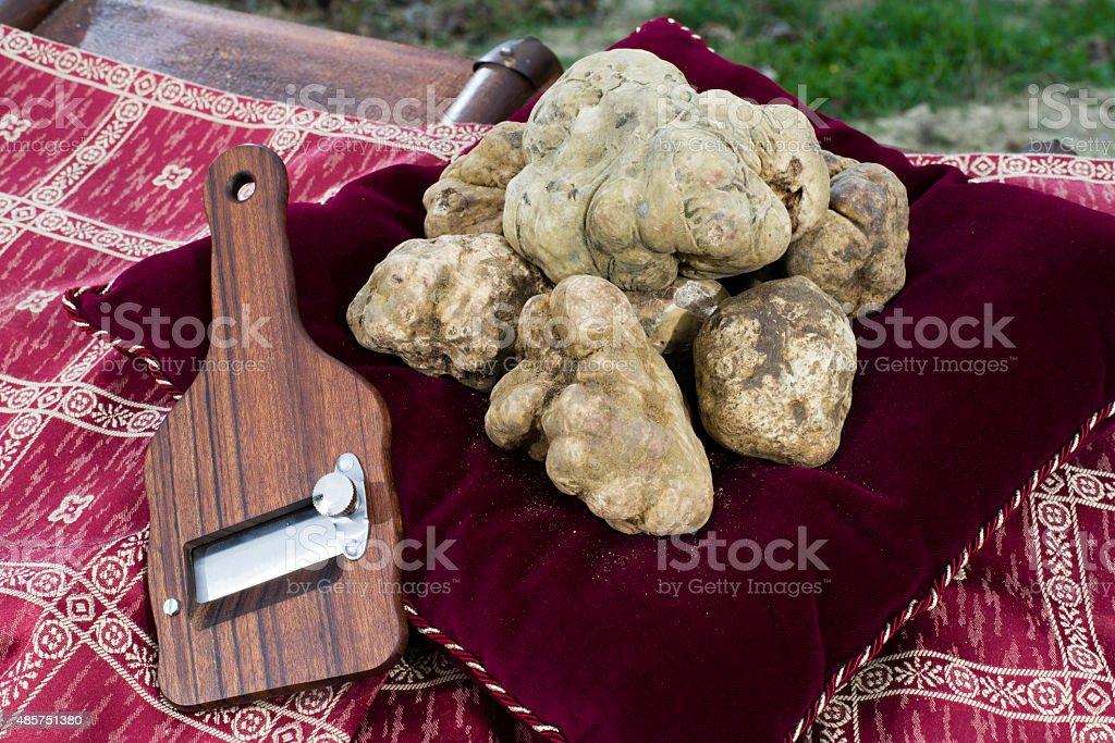 White truffles from Piedmont stock photo