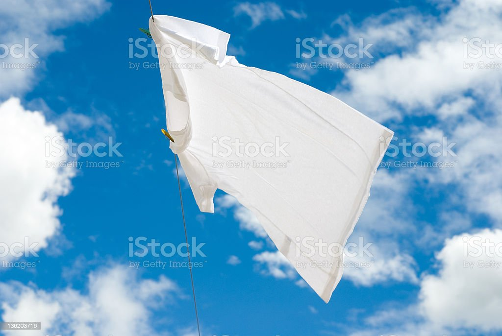 White T-Shirt royalty-free stock photo