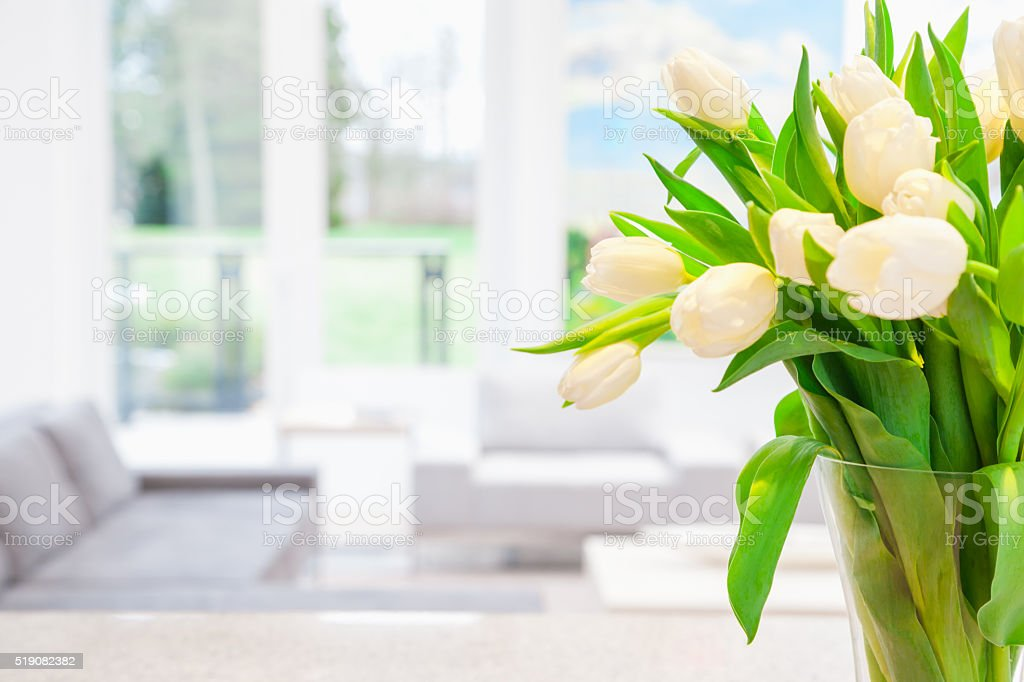 White tulips in vase stock photo