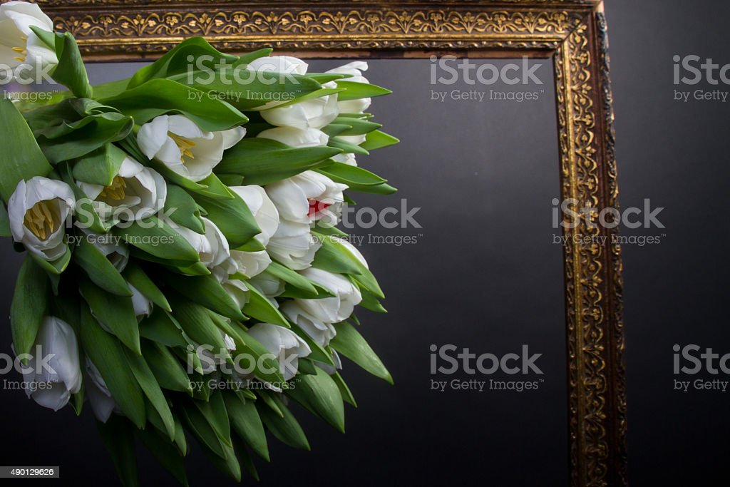 White tupils in photo frame over black royalty-free stock photo