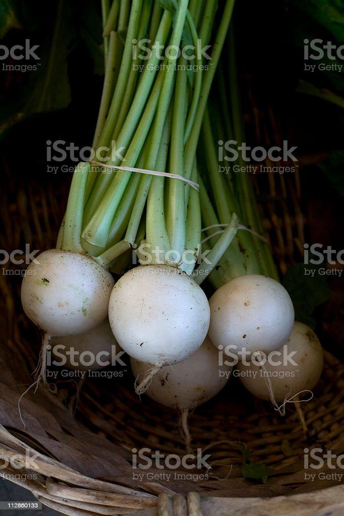 white turnip royalty-free stock photo