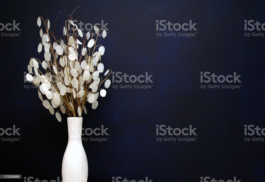 A white vase with white flowers on a black background royalty-free stock photo