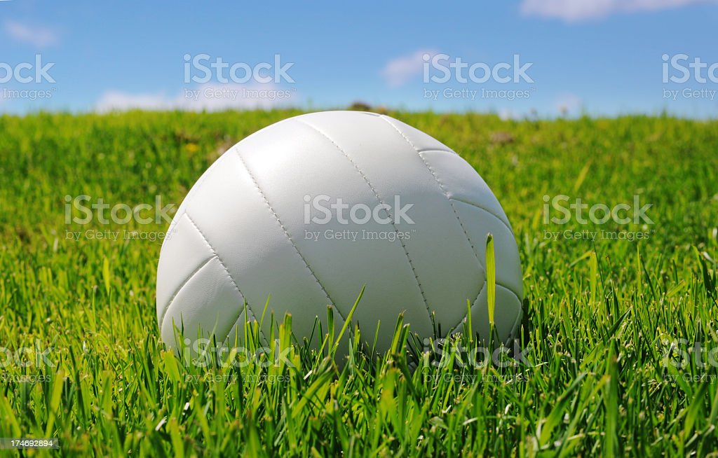 White volleyball in the grass royalty-free stock photo