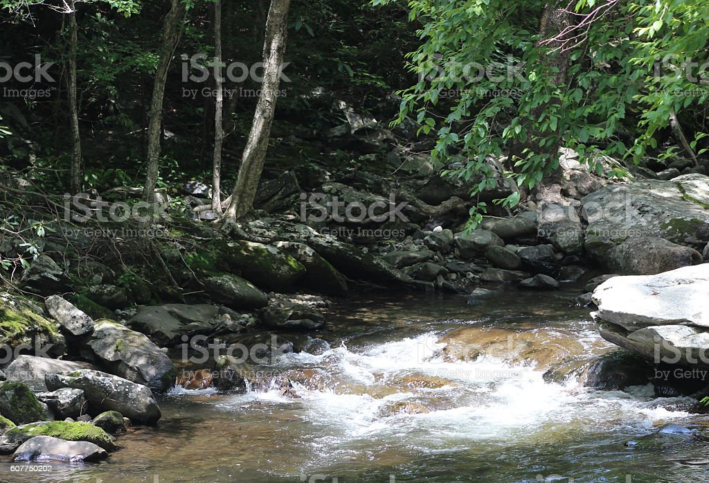 White Water Caps in Smokey Mountain River stock photo