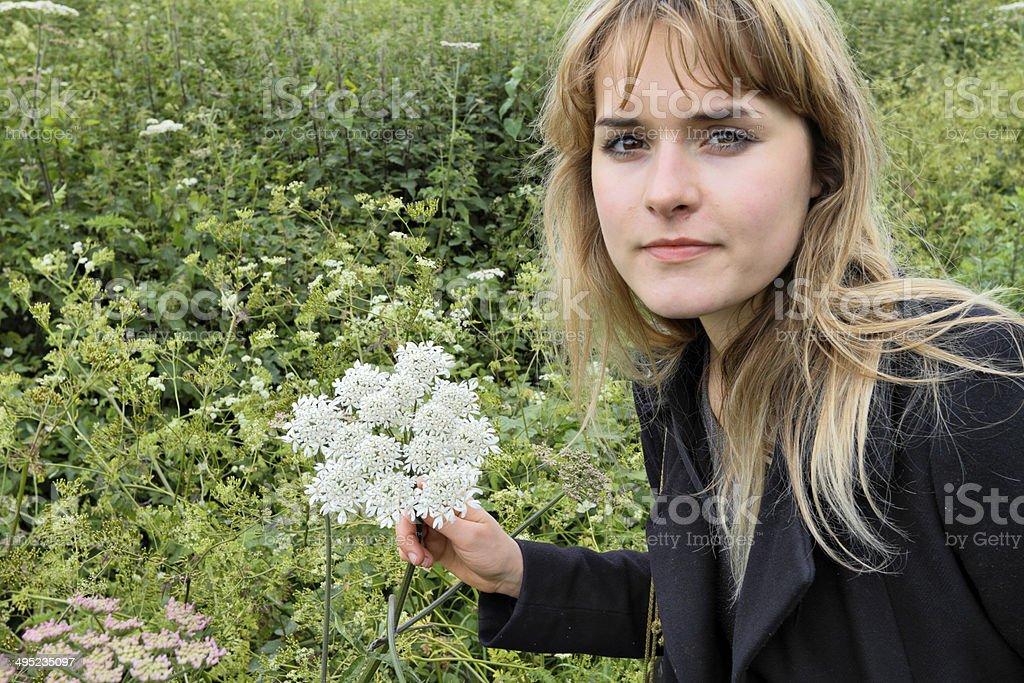 White wild flower hogweed Heracleum sphondylium with outdoor girl stock photo