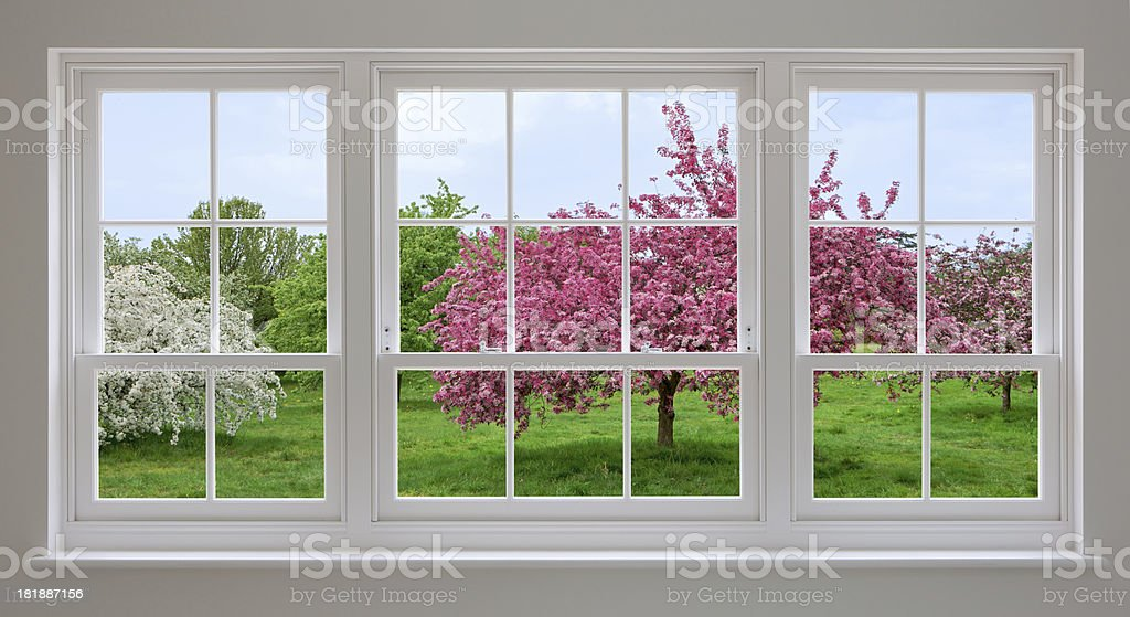 white windows and apple blossoms stock photo
