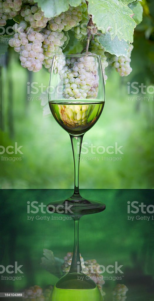 White wine and grapes reflected inside royalty-free stock photo