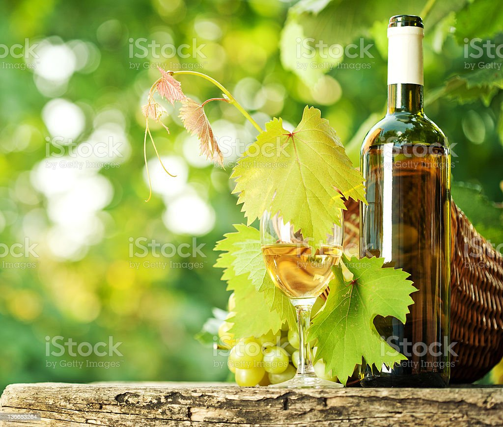 White wine bottle, vine, glass and bunch of grapes royalty-free stock photo